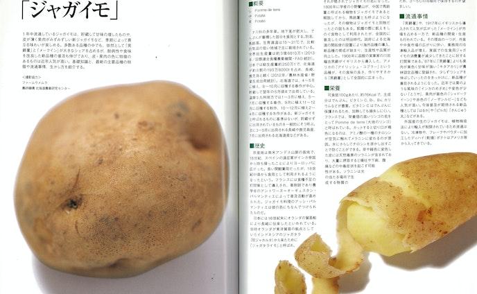 【取材&執筆】食材知識ページ連載 「シェフ」