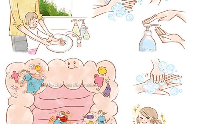 ナチュラルサイエンス小冊子--腸、手洗いイラスト