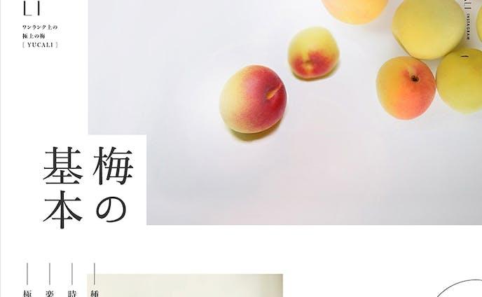 LP(webデザイン)