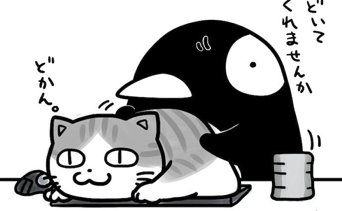 猫と暮らす(妄想)