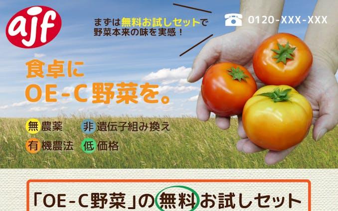 野菜宅配会社のランディングページ・バナー※訓練校課題
