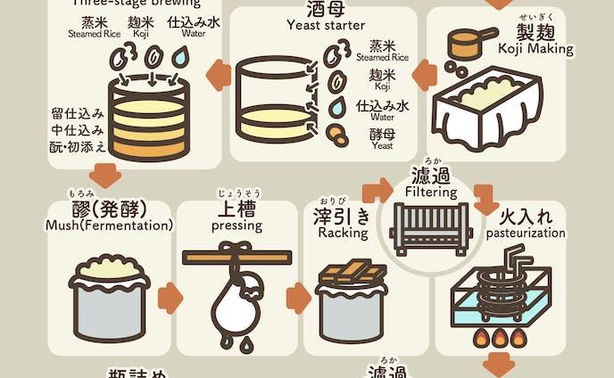 日本酒の製造工程イラスト