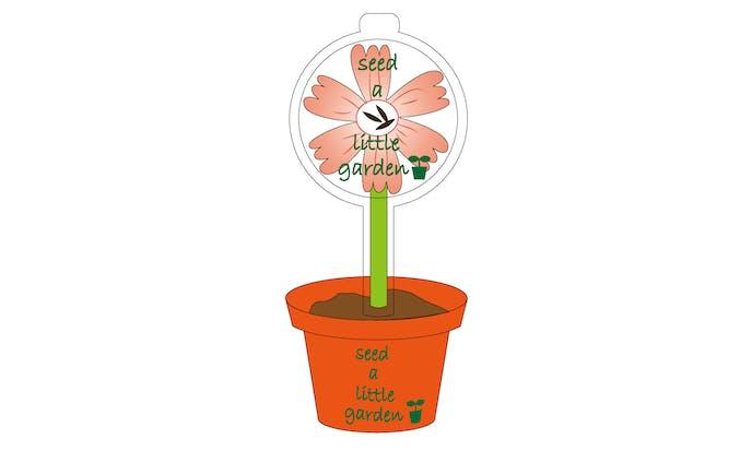 seed a little garden