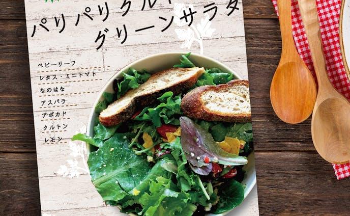 サラダ専門店新メニューポスター