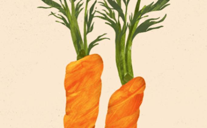 *人参🥕/carrot  Pesticide-free vegetables