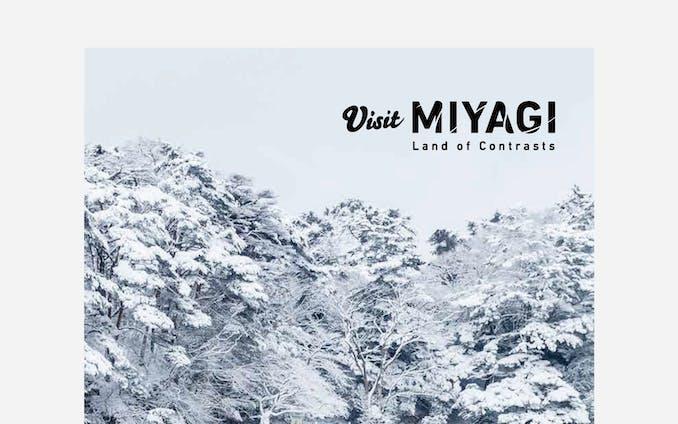 Visit MIYAGI