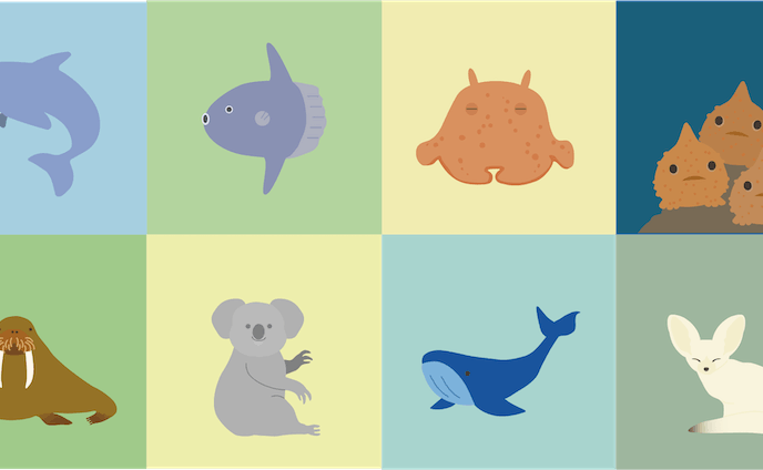 Animals and Fishes