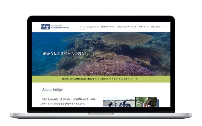 海の環境教育NPO サイトリニューアル