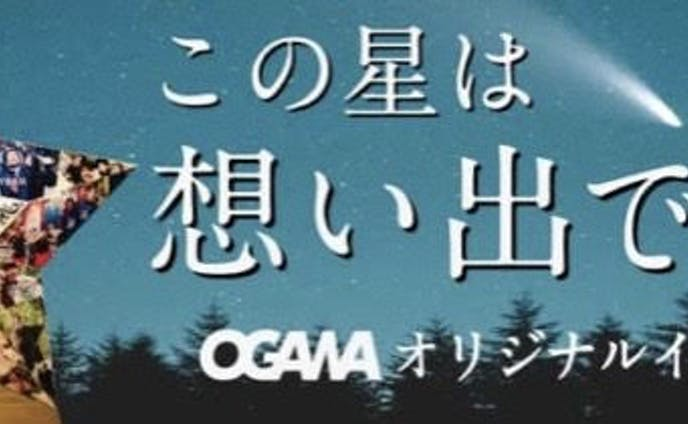 OGAWA様 チラシ等