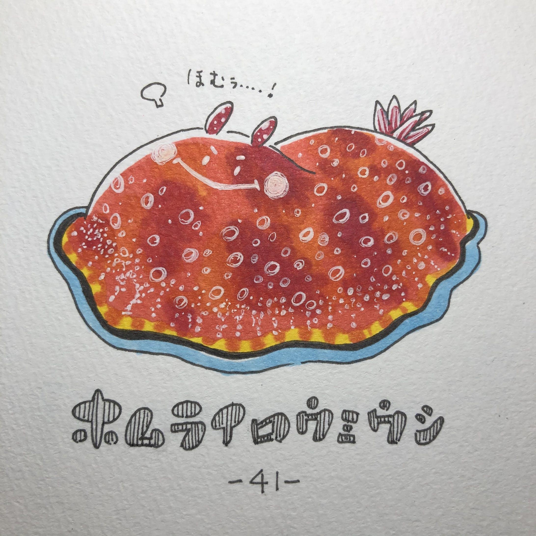 #毎日ゆるかわウミウシ(15〜60)-29