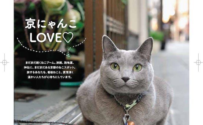 京都の看板猫 記事