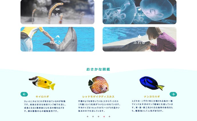 【2020.03】水族館のサイト