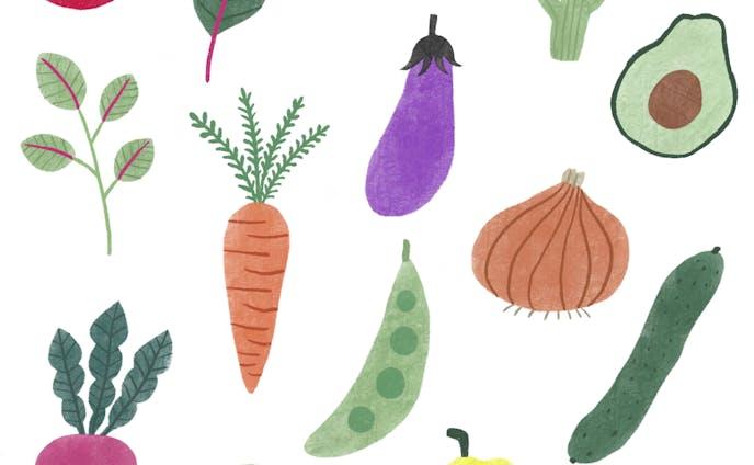 イラスト | 野菜