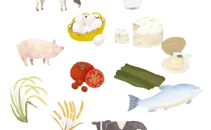 北のめぐみ愛食フェア パンフレット挿絵