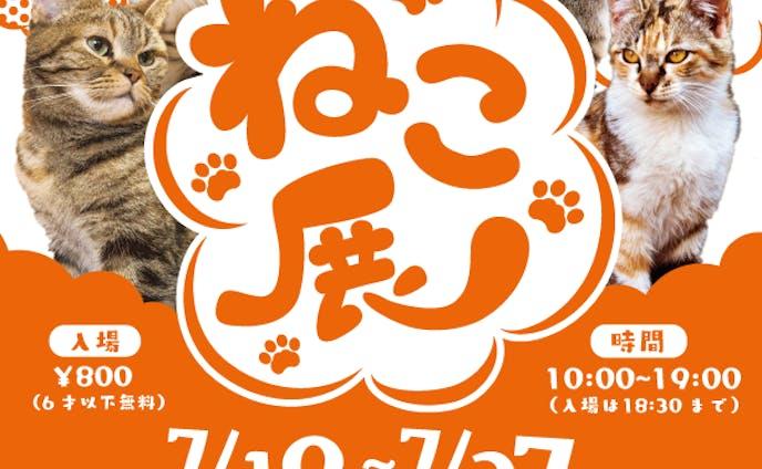 ねこ展 ポスター