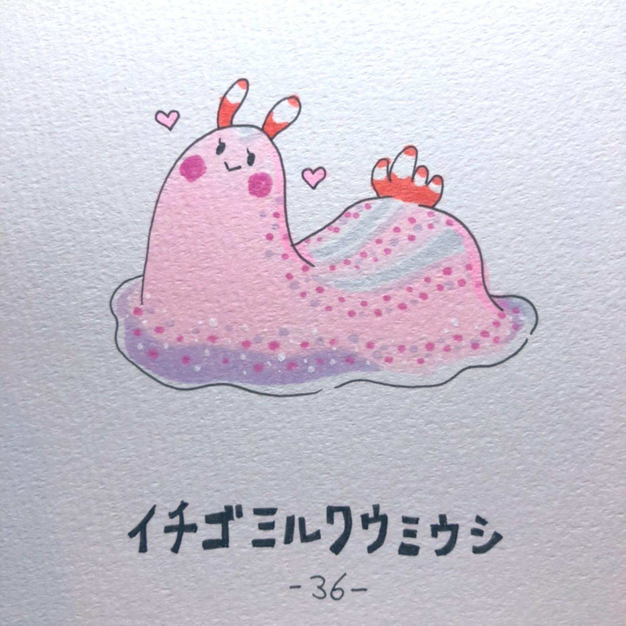 #毎日ゆるかわウミウシ(15〜60)-24