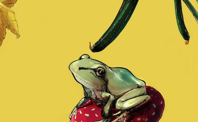 蛙・茸・胡瓜
