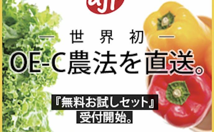 【バナー】ミディアムレクタングル
