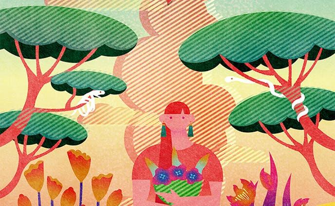 植物、表紙