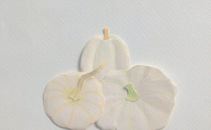 白いかぼちゃ。