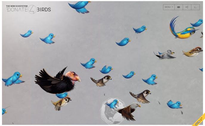 donate 4 bird