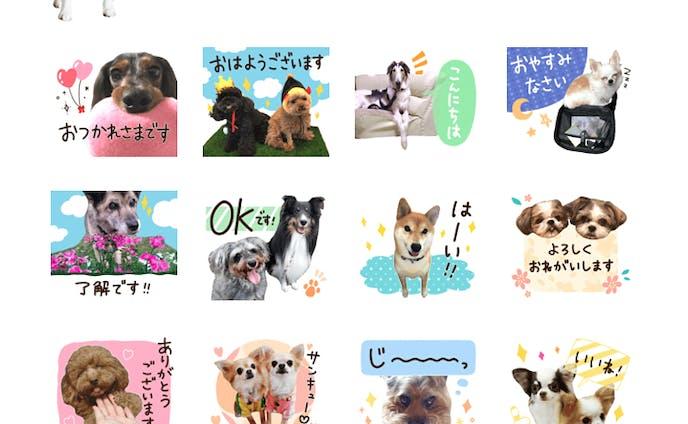 犬_LINEスタンプ