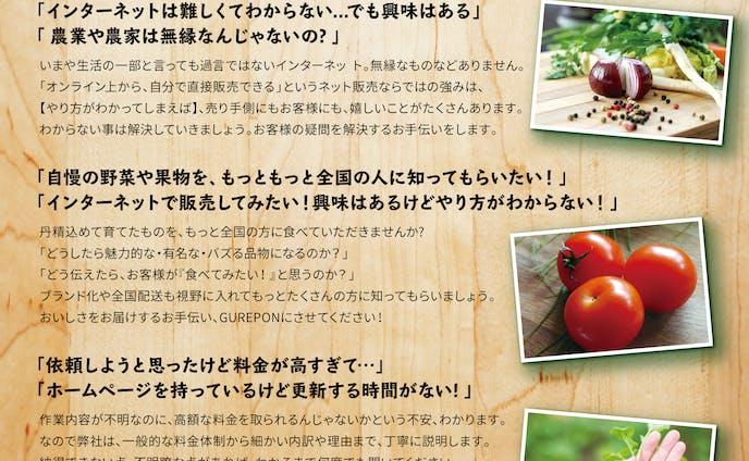 GUREPON チラシ2種