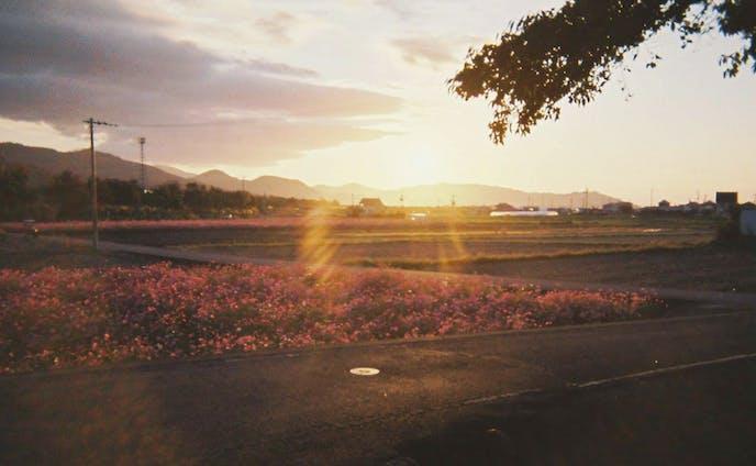 Photo(scenery)