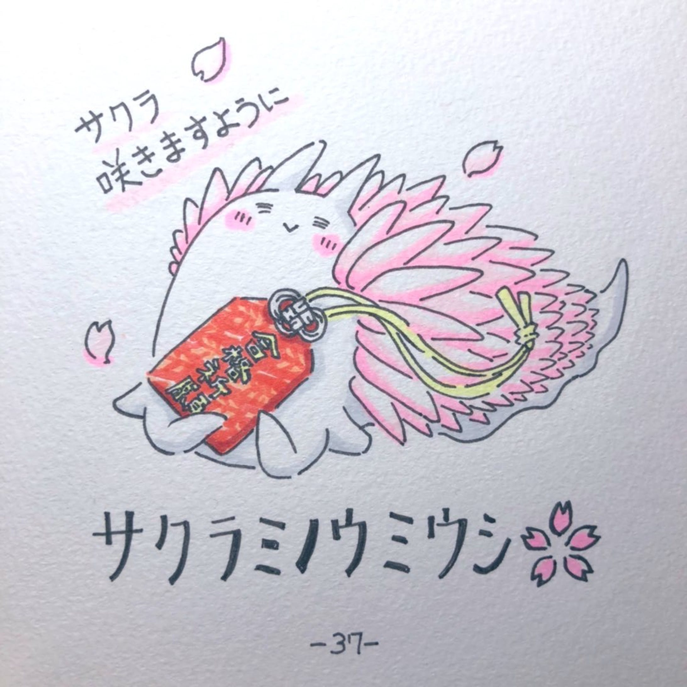 #毎日ゆるかわウミウシ(15〜60)-25