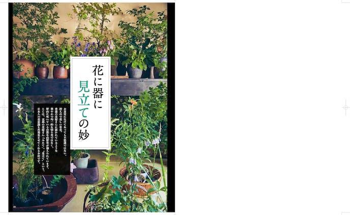 京都の花屋みたて 記事