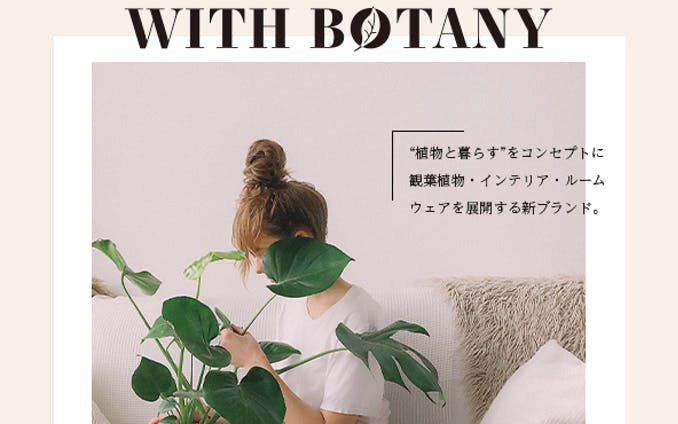 【デザインのドリル】観葉植物専門店のDM