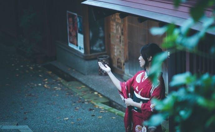 これぞ日本の紅葉!金沢・兼六園の紅葉ライトアップを見に行こう(skyscanner様)