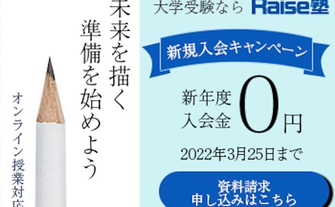 Raise塾 バナー(架空)