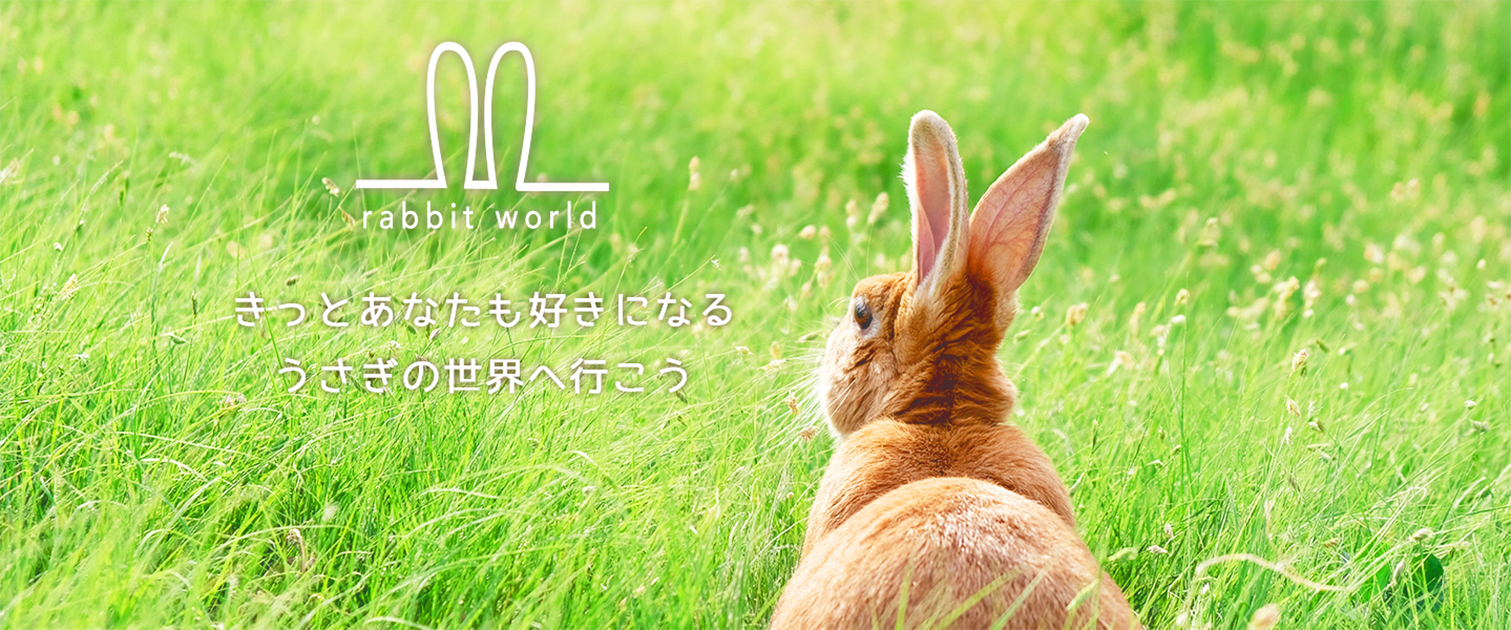 Webサイト(rabbitworld)