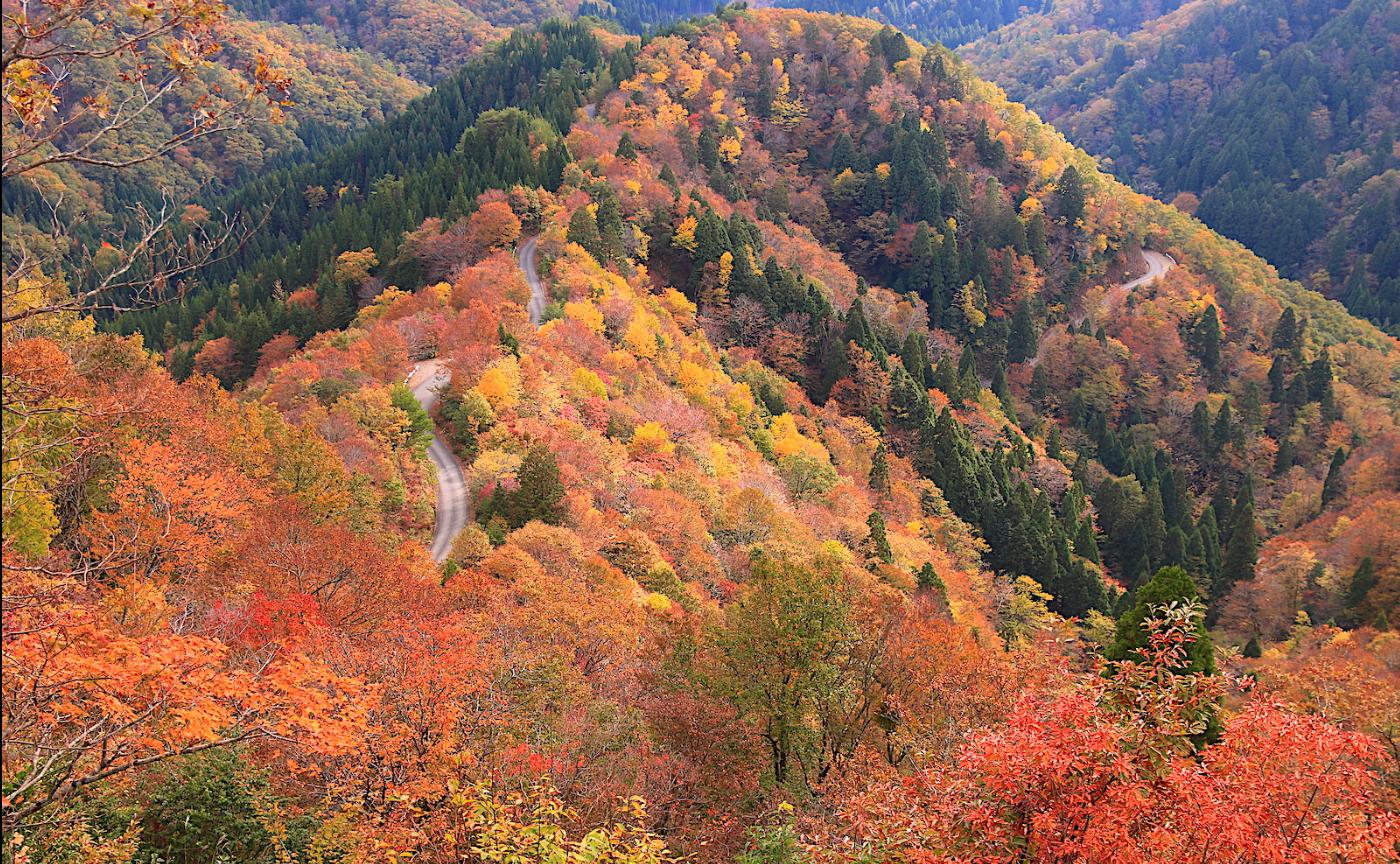 日本の「道」が秘める可能性〜自転車旅の視座から〜