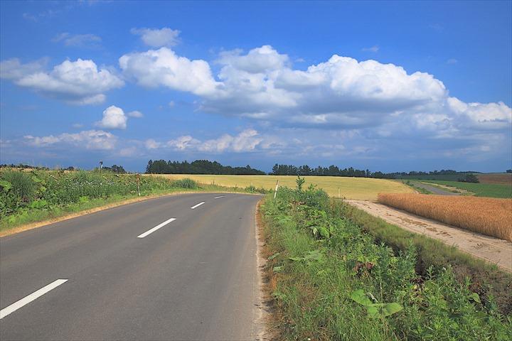 美瑛に広がる牧歌的風景「パッチワークの路」の見所・ポイントをご紹介