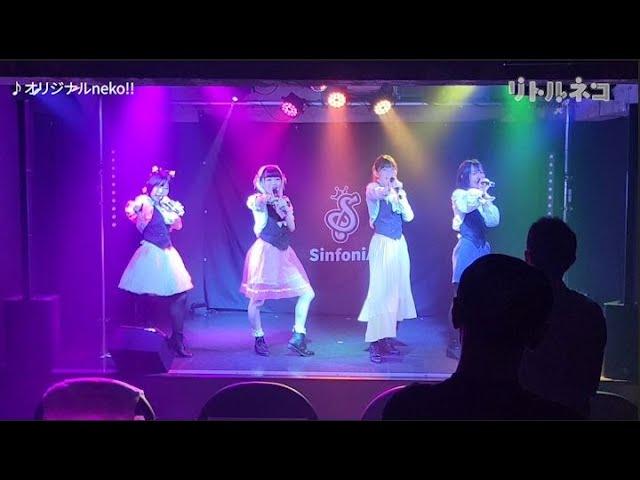 【ライブ】リトルネコ「オリジナルneko!!」2021.7.31