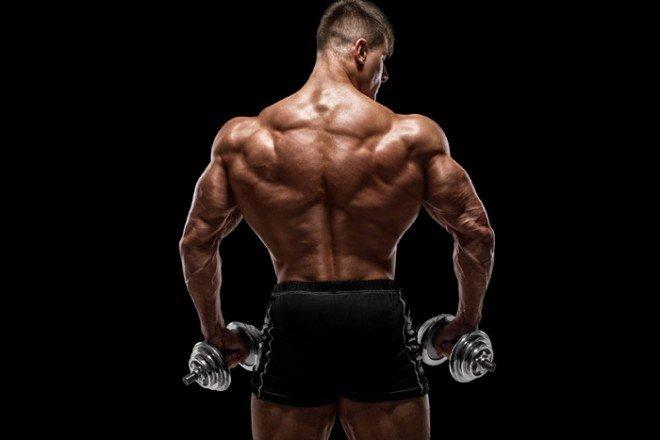 僧帽筋の筋トレでたくましい肩を作る方法【プロが教える肩の筋トレ】