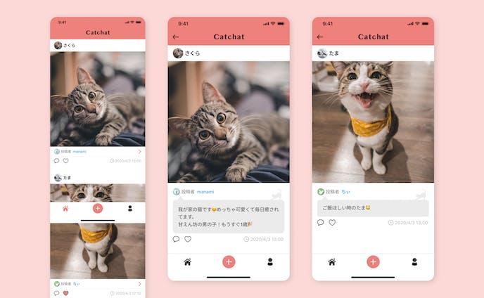 【課題】猫の飼い主のためのSNS