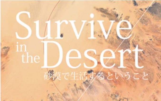 Survive in the desert