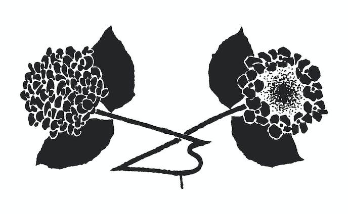 挿絵 紫陽花