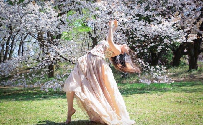 桜SAKURA(photo by OKAZUMI CHIE)