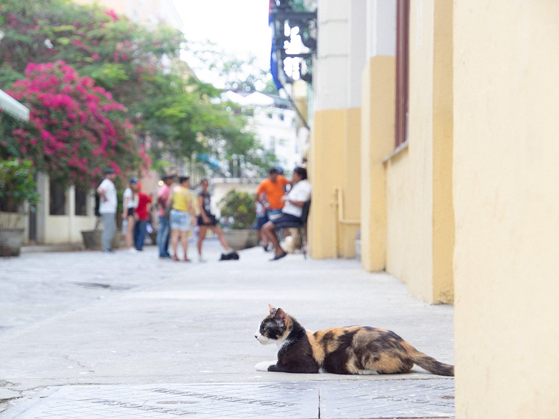 CUBA 2019-7