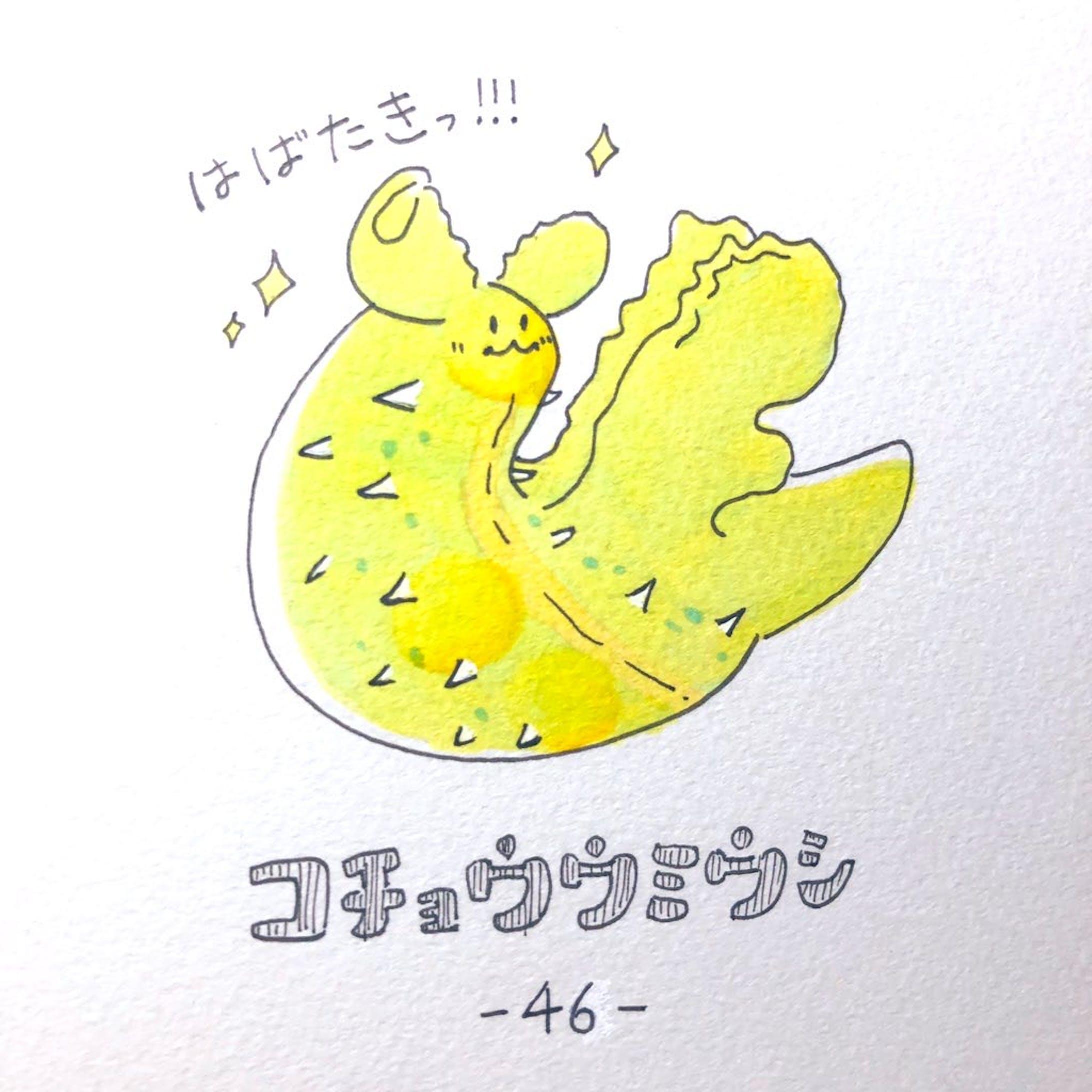 #毎日ゆるかわウミウシ(15〜60)-34
