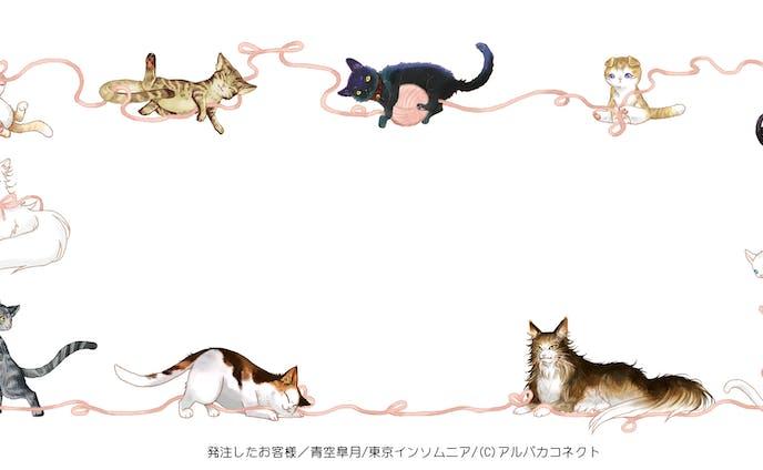 猫のフレーム