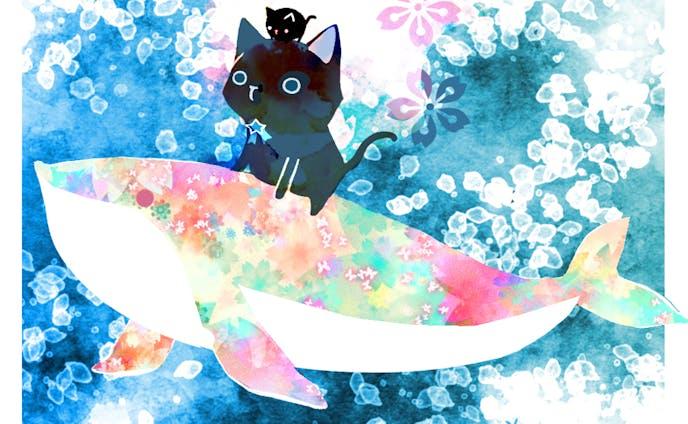 黒猫nyaとキラキラ海