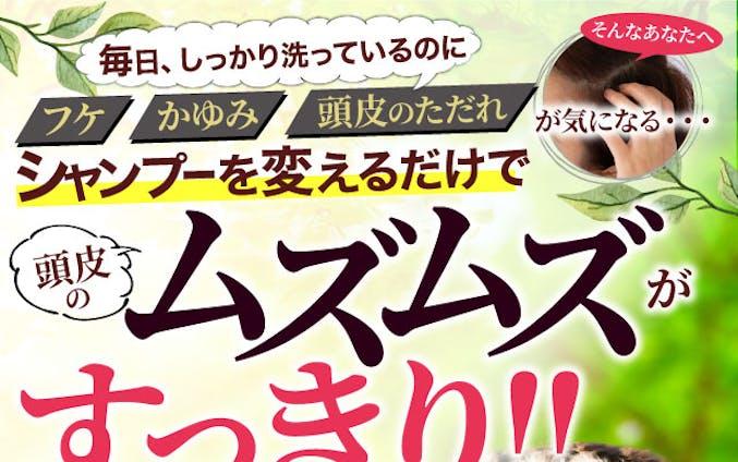 シャンプー商品:LP