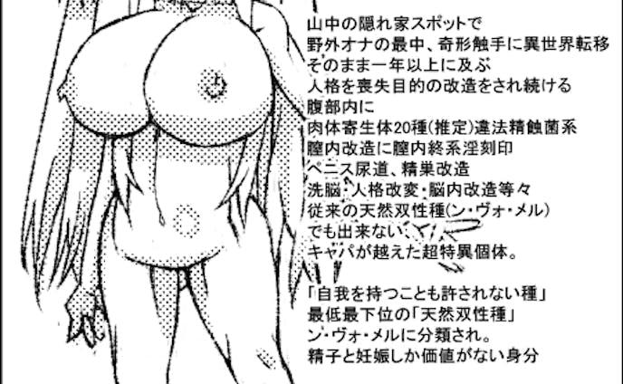 奴隷剣士アイシャ  キャラ設定