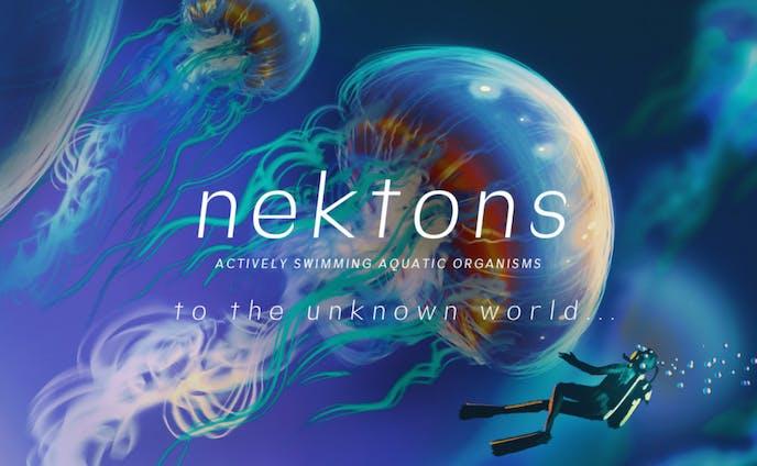 フリーフォント「Nektons」