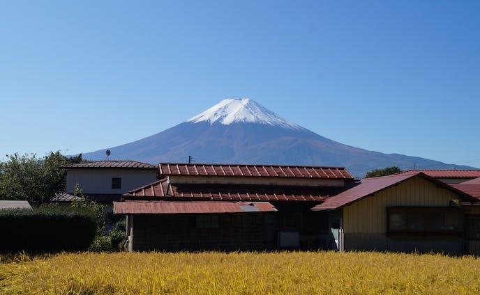 富士山(11月)